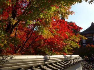 京都禅林寺南禅寺6.JPG