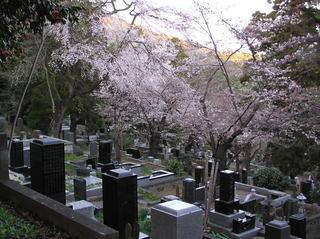 福島県墓地画像.jpg